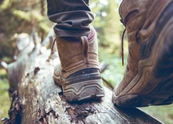 """hiking boots close-up. girl tourist steps on a log""""n"""